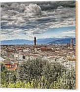 0753 Florence Italy Wood Print