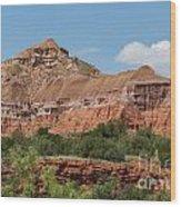 08.03.14 Palo Duro Canyon Rojo Grande Trail 10e Wood Print