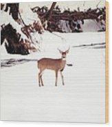 080706-89 Wood Print