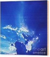 08212013011 Wood Print