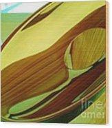 08212013045 Wood Print