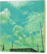 08212013060 Wood Print