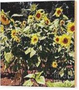 08252013038 Wood Print