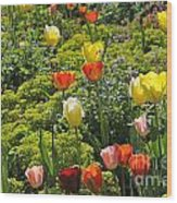 090811p128 Wood Print