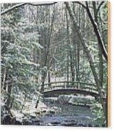 092508-1 Wood Print