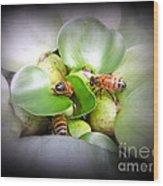 1 . 2 . 3 . Honeybees Wood Print