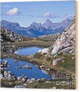 Artist Ridge Tarns Wood Print