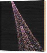 Festival Of Lights - Christmas At The Botanical Gardens Wood Print