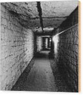 Image Of The Catacomb Tunnels In Paris France Wood Print