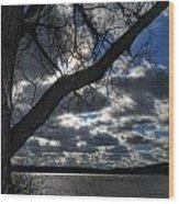 003 Grand Island Bridge Series Wood Print