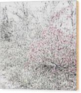 1-108 Manifestations Of Eternity Wood Print