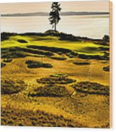 #15 At Chambers Bay Golf Course - Location Of The 2015 U.s. Open Tournament Wood Print