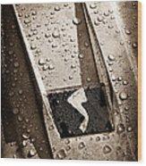 1963 Studebaker Avanti Hood Ornament Wood Print