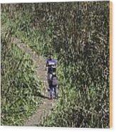 2 Photographers Walking Through Tall Grass Wood Print