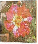 4th Of July Rose Wood Print