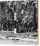 1-60 Manifestations Of Eternity Wood Print
