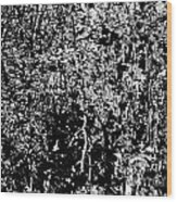 1-66 Manifestations Of Eternity Wood Print