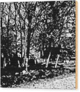 1-79 Manifestations Of Eternity Wood Print