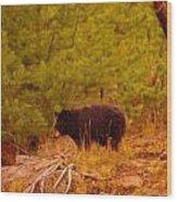 A Black Bear Wood Print