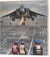 A Gr9 Harrier  Wood Print