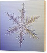 A Real Snowflake Showing The Classic Wood Print