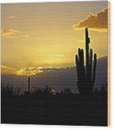 A Saguaro Sunset  Wood Print