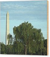 A Weeping Willow Washington Monument Wood Print