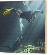 A Young Married Couple Scuba Diving Wood Print by Michael Wood