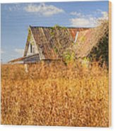 Abandoned Farmhouse In Field 3 Wood Print