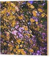Abstract 276 Wood Print