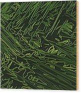 Abstract 286 Wood Print