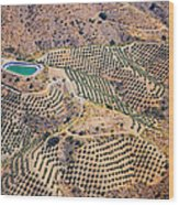 Aerial View Of Andalusia. Spain Wood Print
