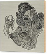 Aesop's Fables  Wood Print by Nickolas Kossup