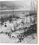 After The Storm Bw Wood Print