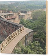 Agra Fort Tourist Destination In India Wood Print