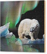 Alaska Aurora Polar Bear Search Wood Print