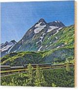 Alaska Railroad To Denali Wood Print