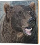 Alaskan Brown Bear Wood Print