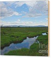 Alaskan Tundra Wood Print