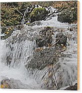 Alaskan Waterfall Wood Print