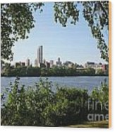 Albany Skyline Wood Print