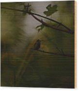 Alone Wood Print by Lori Tambakis