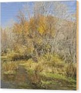 Alpine Loop Scenic Byway American Fork Canyon Utah Wood Print