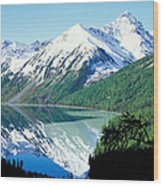 Altai Mountains Wood Print