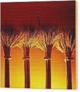 Amber Grains 2 Wood Print