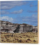 Amber Waves Of Grain And Purple Mountains Wood Print