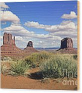 American Landscape - Monument Valley Wood Print