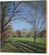 An Autumn Stroll Wood Print
