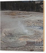 Anemone Geyser In Upper Geyser Basin Wood Print