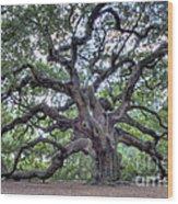 Angel Oak Wood Print by Dustin K Ryan
